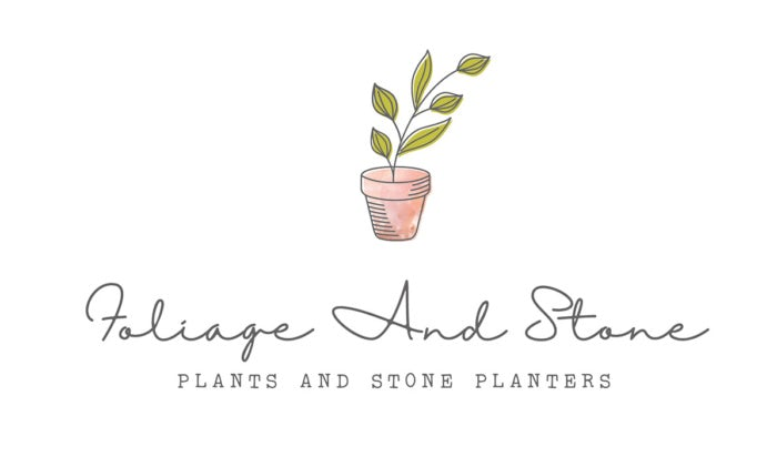 minimal and natural green and brown plant  logo  design