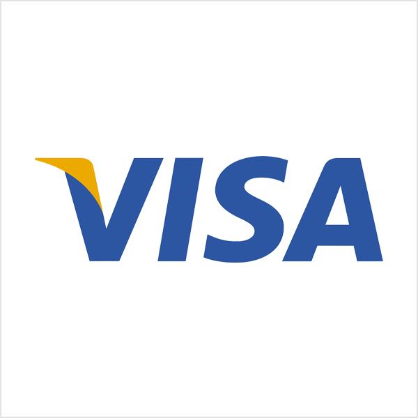 visa wordmark  logo
