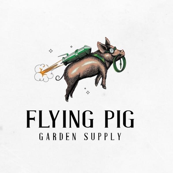 flying pig  logo