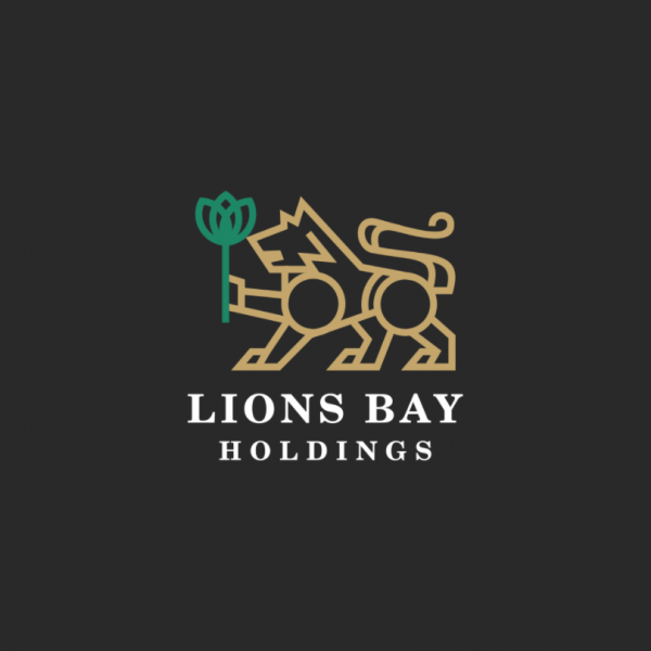 image of a lion comprised of smaller geometric shapes