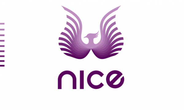 logo  with bird
