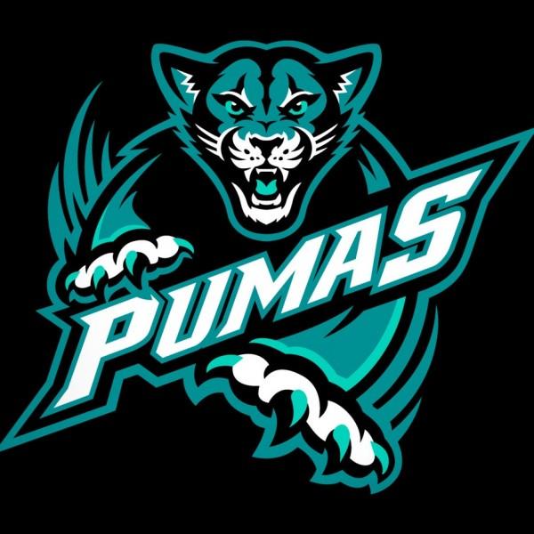 Pumas mascot  logo  design